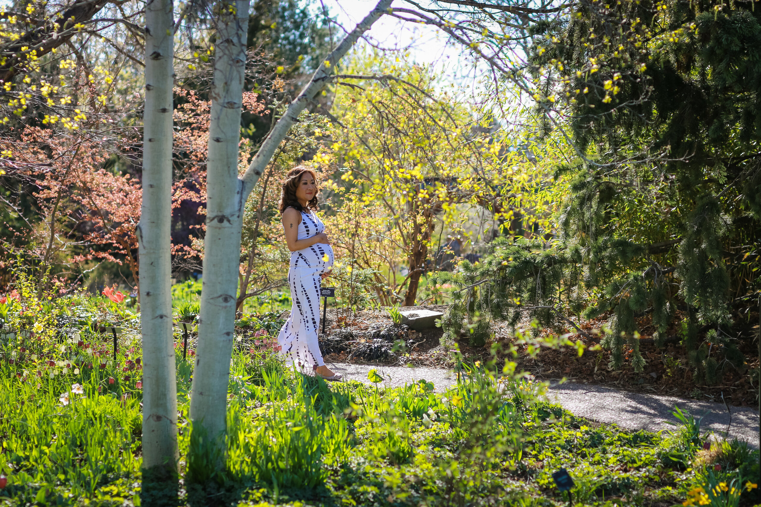 soul shifts energy tip thuy dam